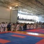 Черновицкие таеквондисти завоевали медали на Чемпионате Буковины