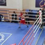 В Черновцах проходит Чемпионат Украины по боксу