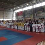 Турнир по каратэ Chernivtsi Open 2015 собрал рекордное количество участников