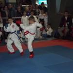 Кубок по каратэ провели в Черновцах