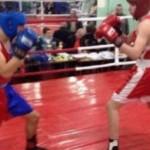 В Черновцах провели открытое первенство среди спортивных школ по боксу
